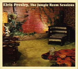 image cover FTD The Jungle Room Sessions